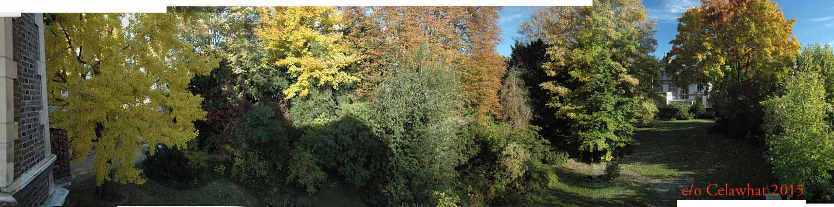 panoramic2
