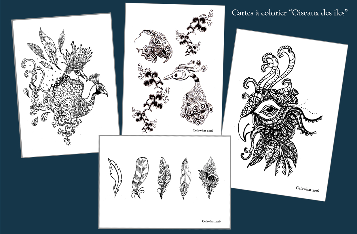 cartes-a-colorier-oiseau-1