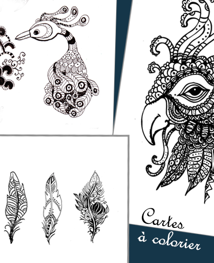 cartes-a-colorier-oiseau-top