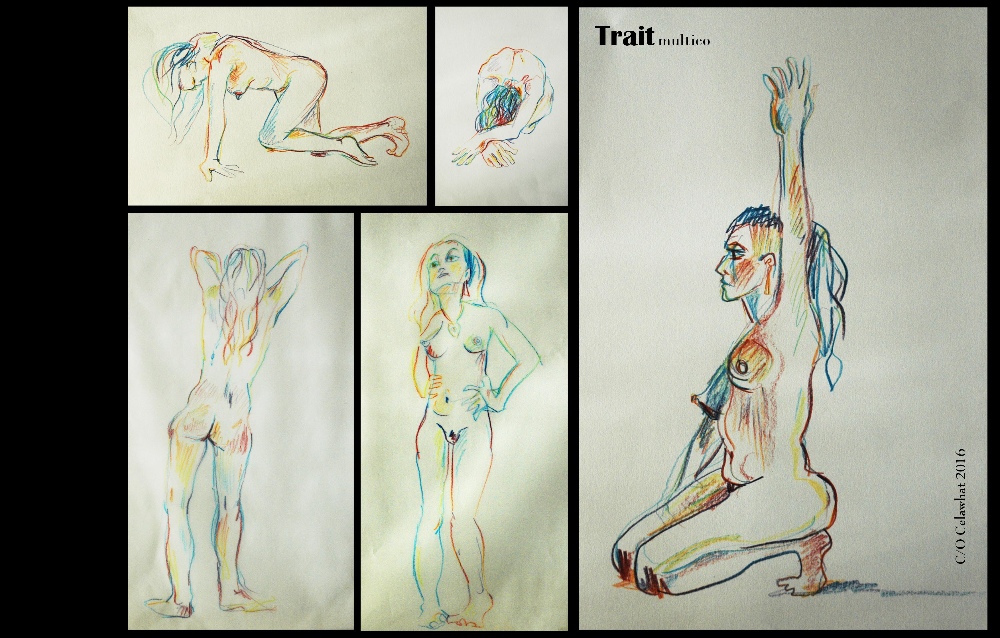 trait-multicolore-15